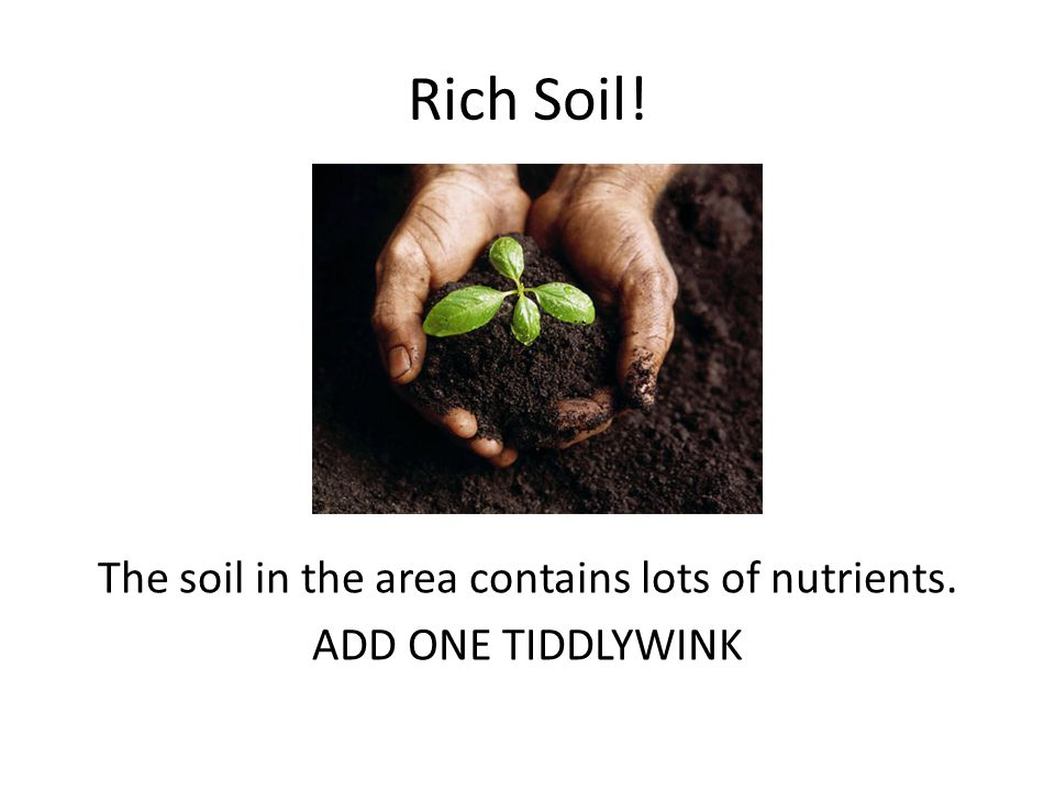 Rich Soil! The soil in the area contains lots of nutrients. ADD ONE TIDDLYWINK