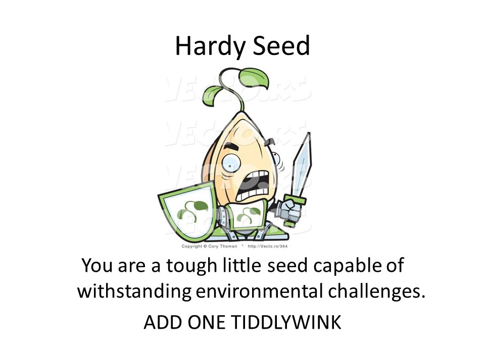 Hardy Seed You are a tough little seed capable of withstanding environmental challenges.