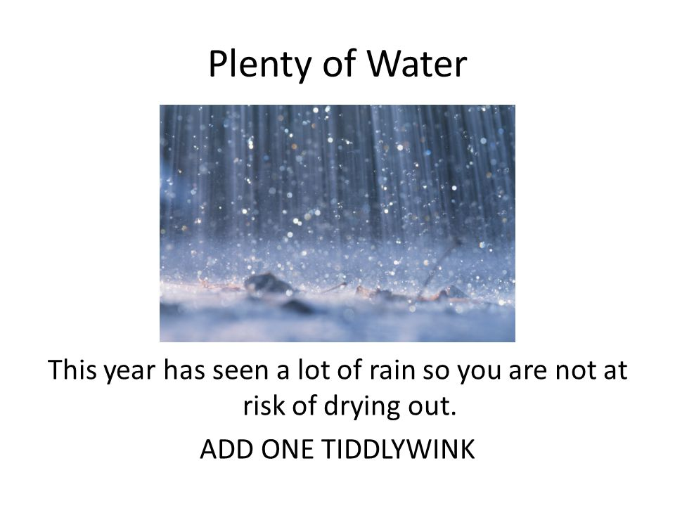 Plenty of Water This year has seen a lot of rain so you are not at risk of drying out.