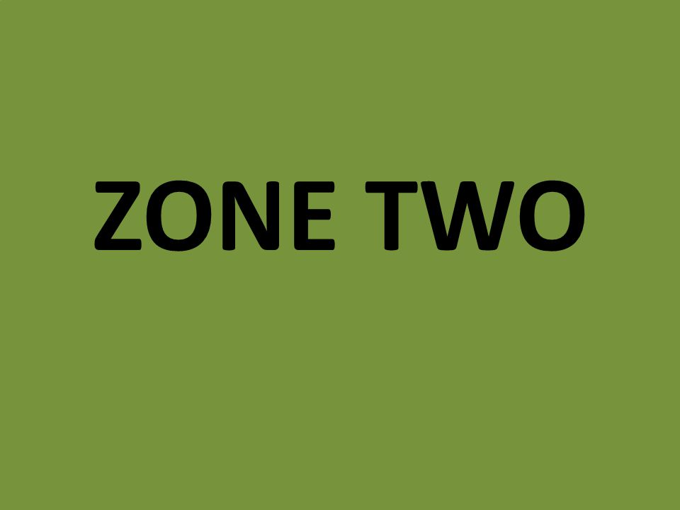 ZONE TWO