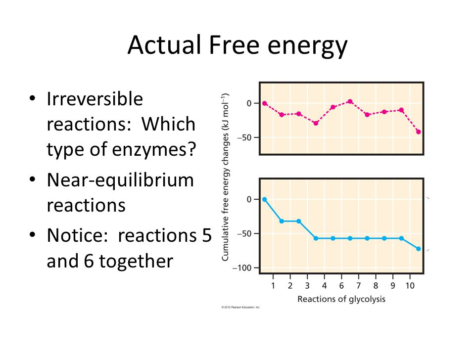 Actual Free energy Irreversible reactions: Which type of enzymes.