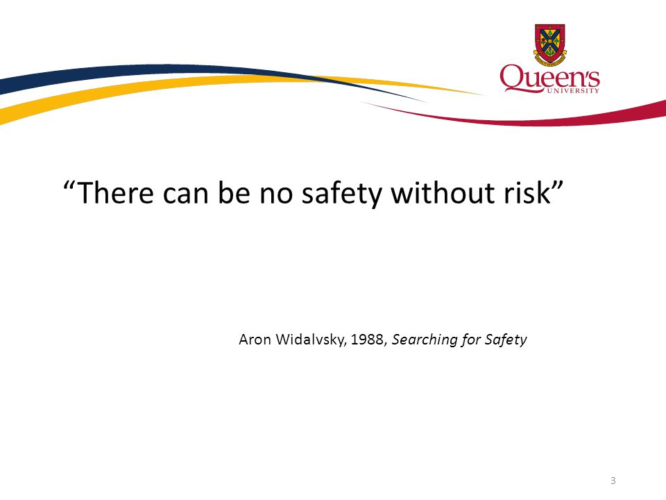 """There can be no safety without risk"" Aron Widalvsky, 1988, Searching for Safety 3"