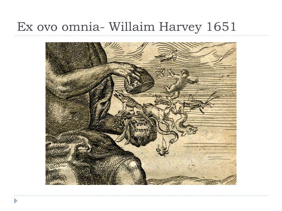 Ex ovo omnia- Willaim Harvey 1651