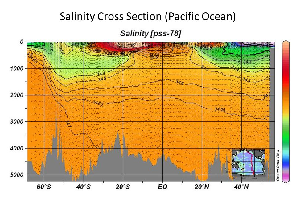 Salinity Cross Section (Pacific Ocean)
