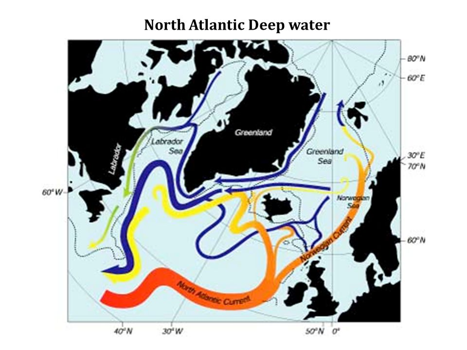 Abyssal Circulation is topographically controlled