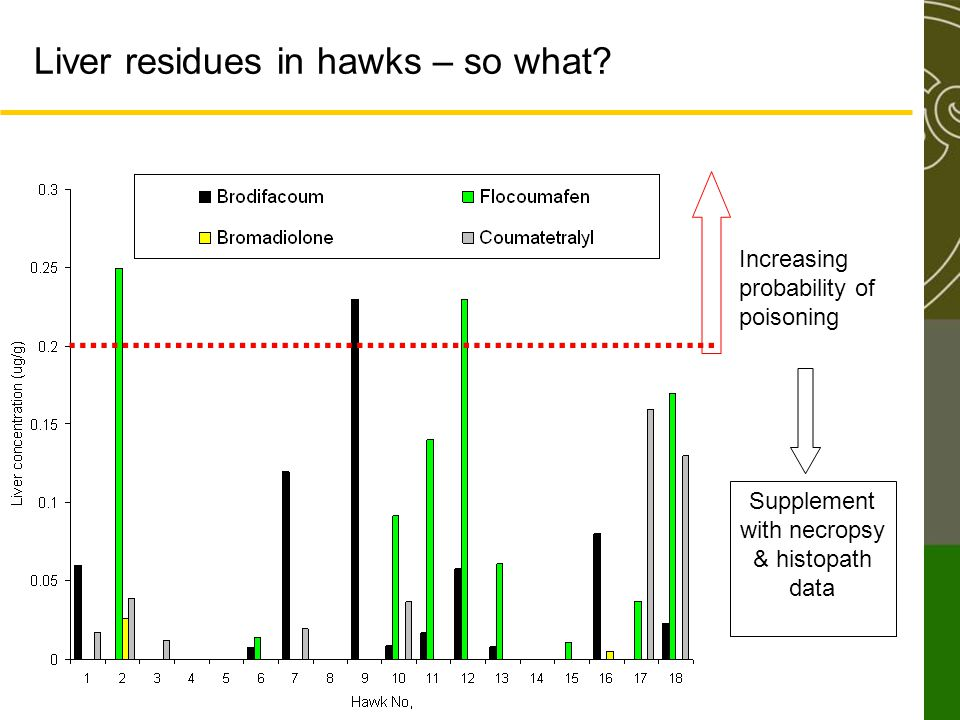 Liver residues in hawks – so what? Increasing probability of poisoning Supplement with necropsy & histopath data