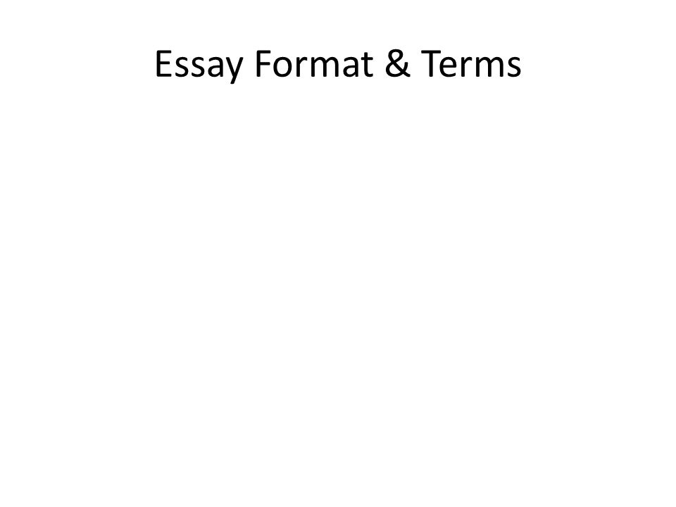 Essay Format & Terms