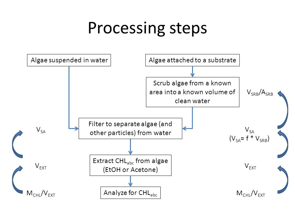 Processing steps Algae suspended in waterAlgae attached to a substrate Filter to separate algae (and other particles) from water Extract CHL abc from algae (EtOH or Acetone) Analyze for CHL abc V SA V EXT M CHL /V EXT Scrub algae from a known area into a known volume of clean water V SA (V SA = f * V SRB ) V EXT M CHL /V EXT V SRB /A SRB