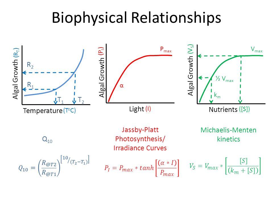 Biophysical Relationships Algal Growth Nutrients Algal Growth Light Algal Growth Temperature Jassby-Platt Photosynthesis/ Irradiance Curves α P max (I) (P I ) (T o C) Q 10 (R T ) T1T1 T2T2 R2R2 R1R1 (V S ) Michaelis-Menten kinetics ([S]) V max kmkm ½ V max