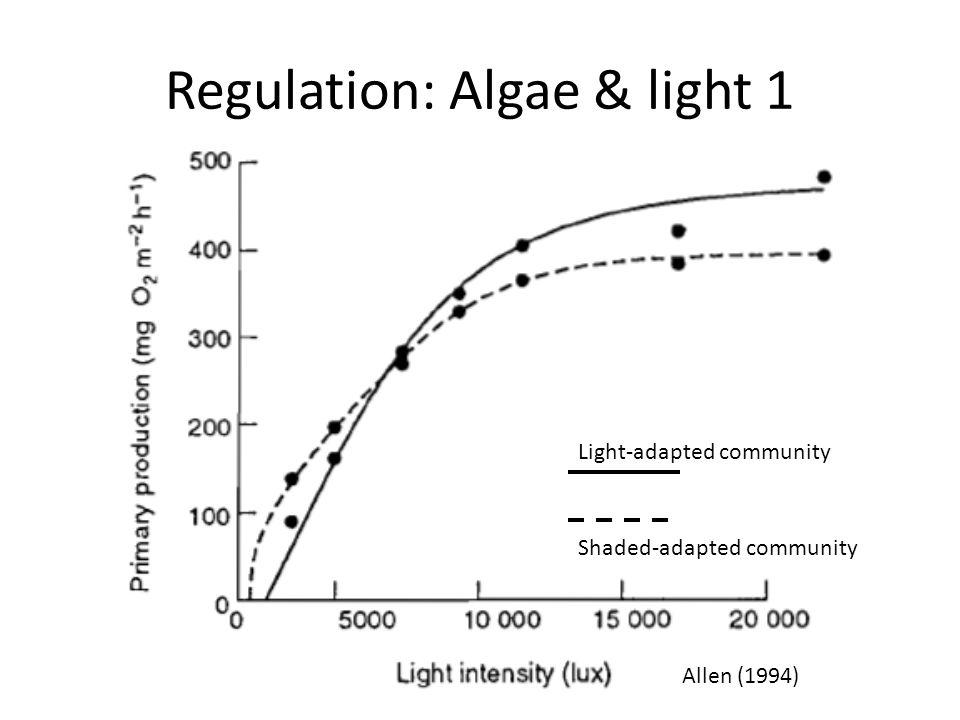 Regulation: Algae & light 1 Allen (1994) Shaded-adapted community Light-adapted community