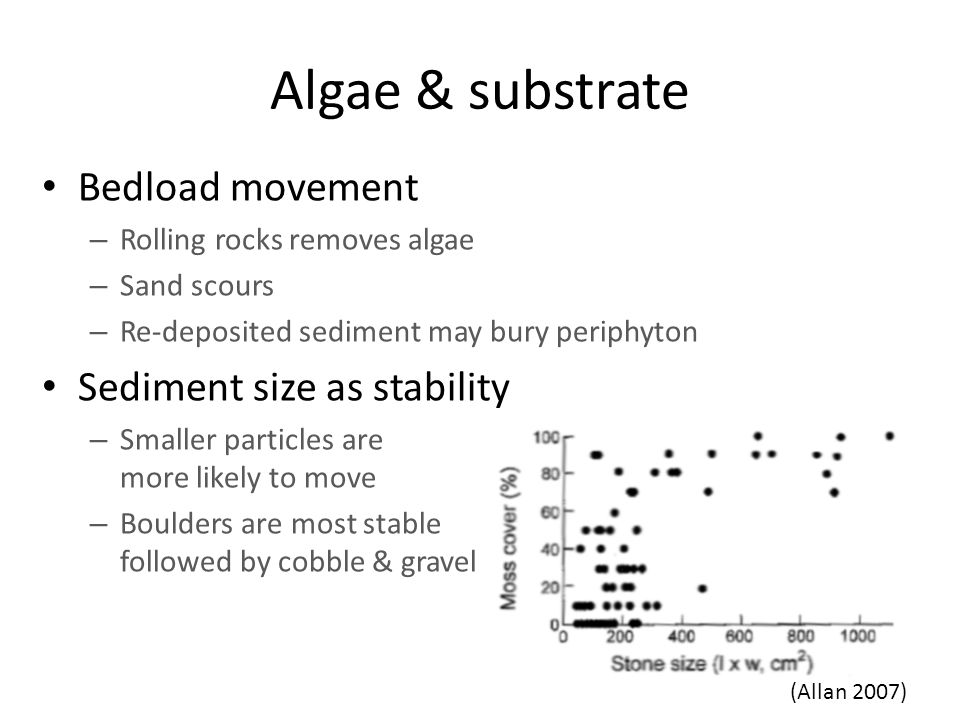 Algae & substrate Bedload movement – Rolling rocks removes algae – Sand scours – Re-deposited sediment may bury periphyton Sediment size as stability – Smaller particles are more likely to move – Boulders are most stable followed by cobble & gravel (Allan 2007)