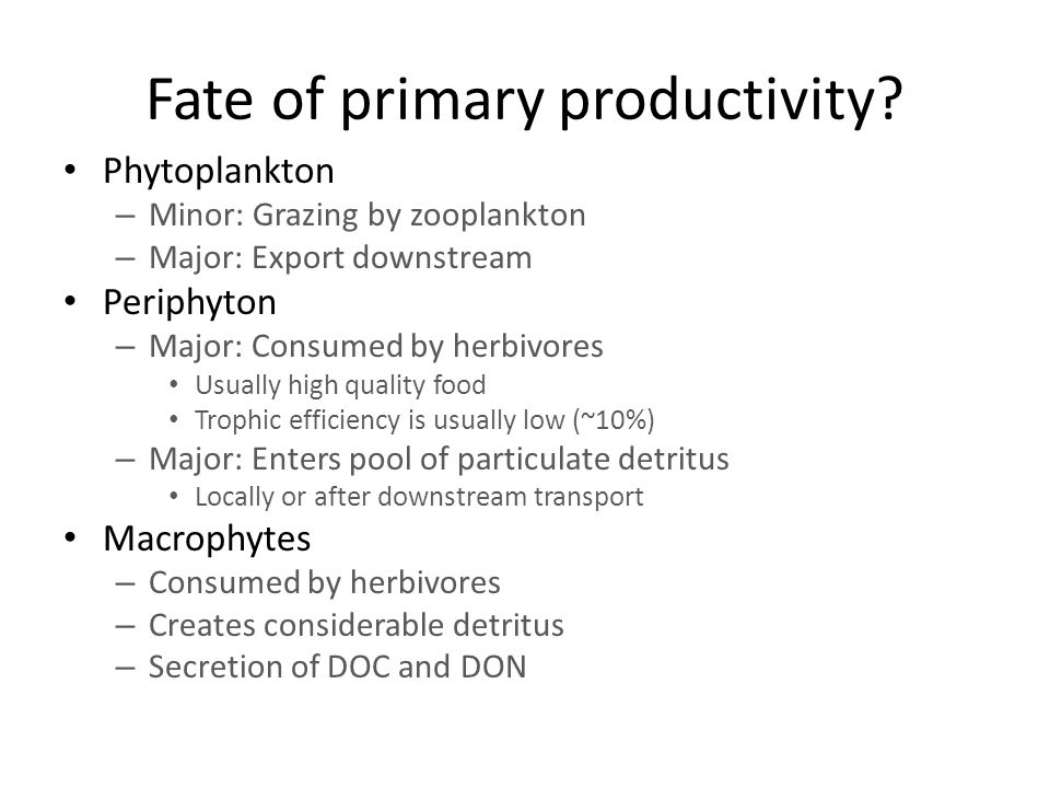 Fate of primary productivity.