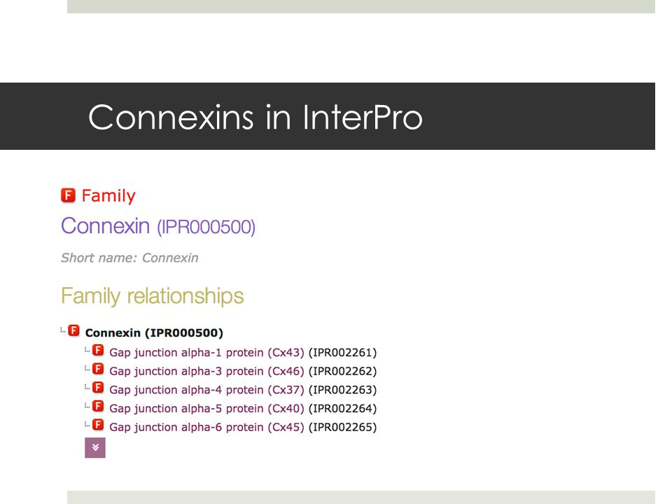 Connexins in InterPro
