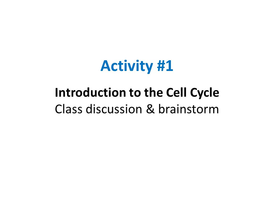 Activity #1 Introduction to the Cell Cycle Class discussion & brainstorm