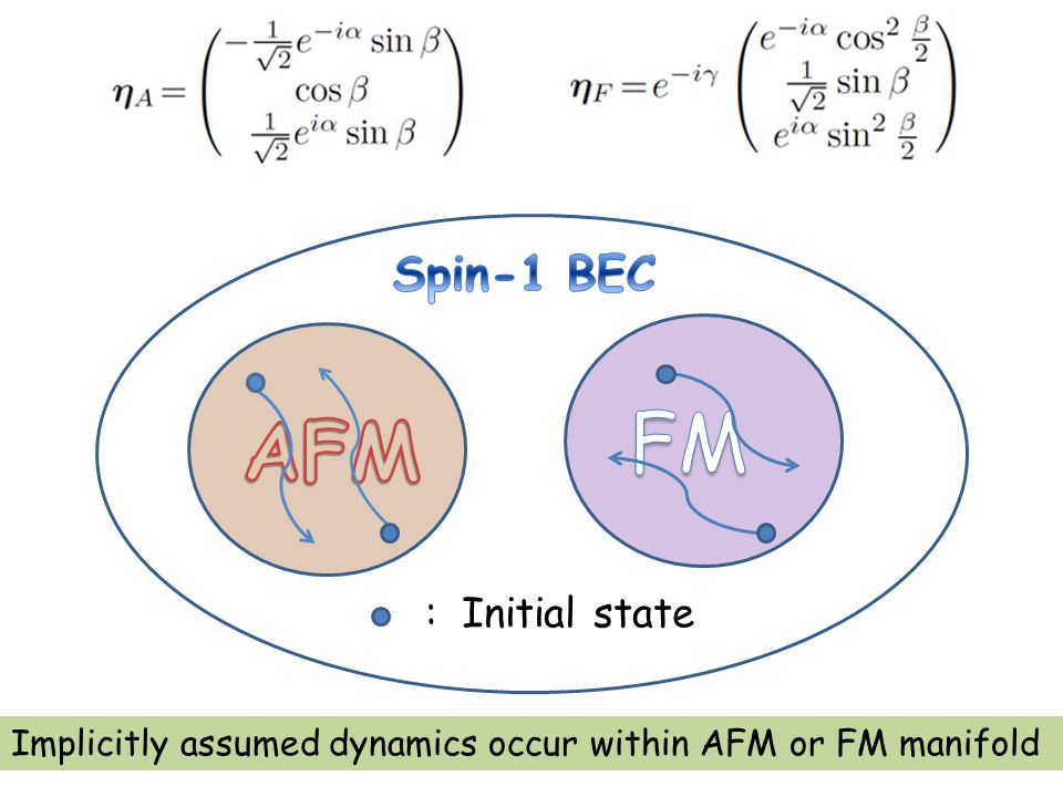: Initial state Implicitly assumed dynamics occur within AFM or FM manifold