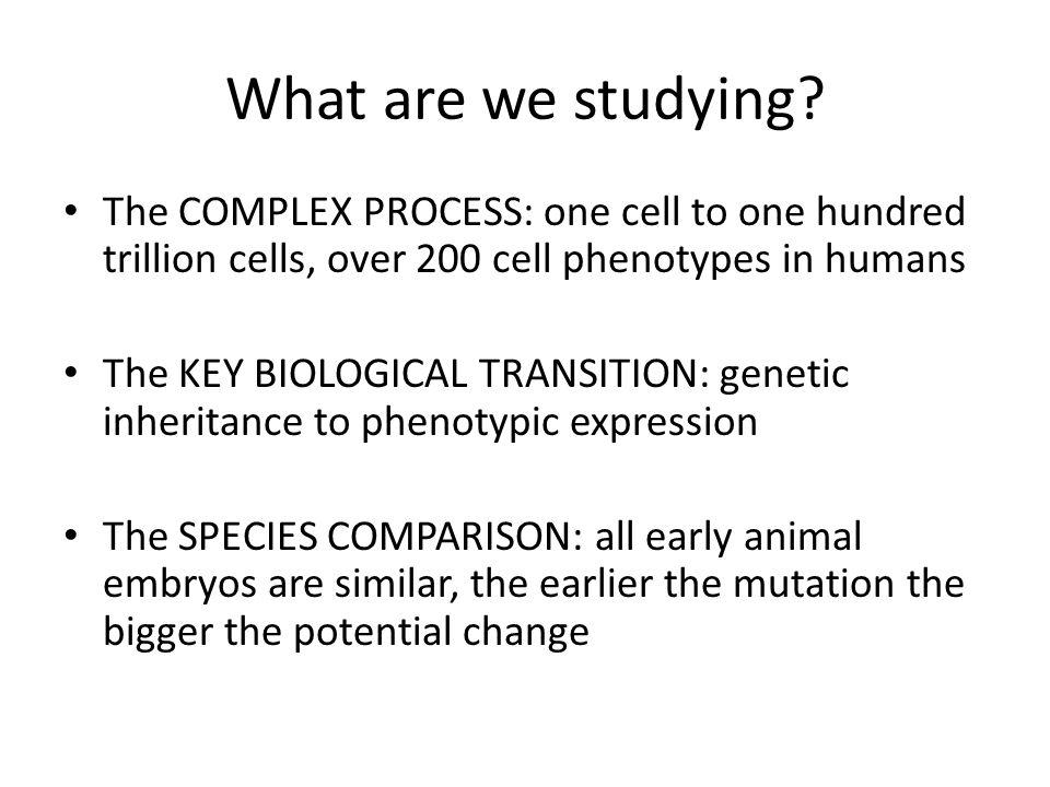 Bio 127 - Section I Introduction to Developmental Biology Developmental Anatomy Gilbert 9e – Chapter 1