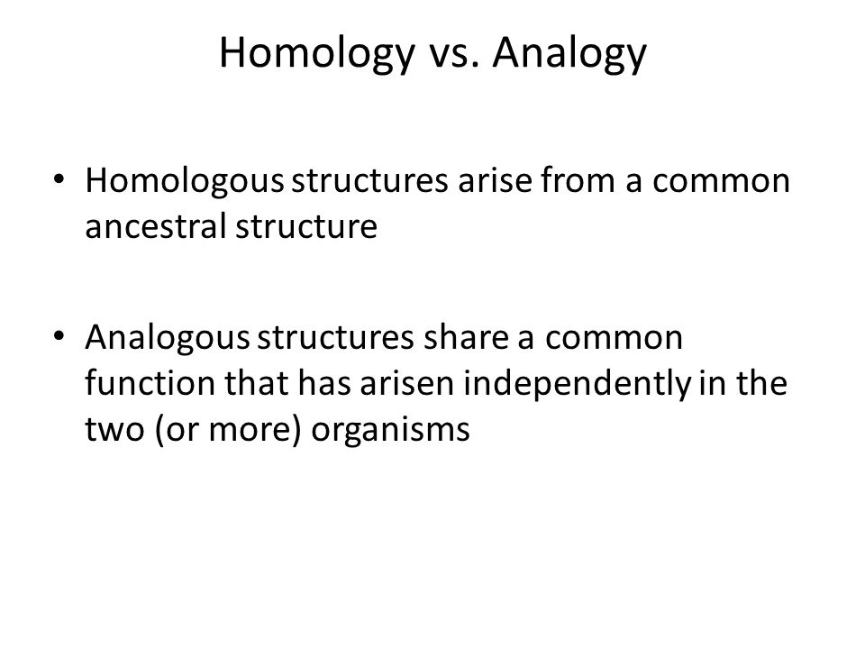 Homology vs.