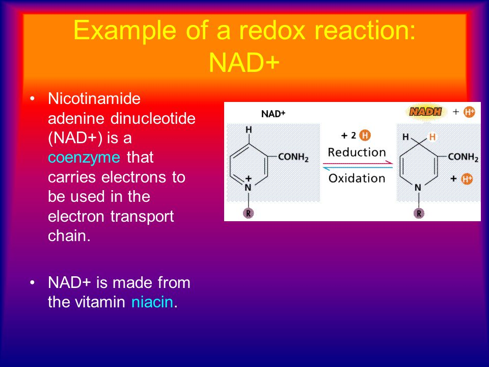 Example of a redox reaction: NAD+ Nicotinamide adenine dinucleotide (NAD+) is a coenzyme that carries electrons to be used in the electron transport c