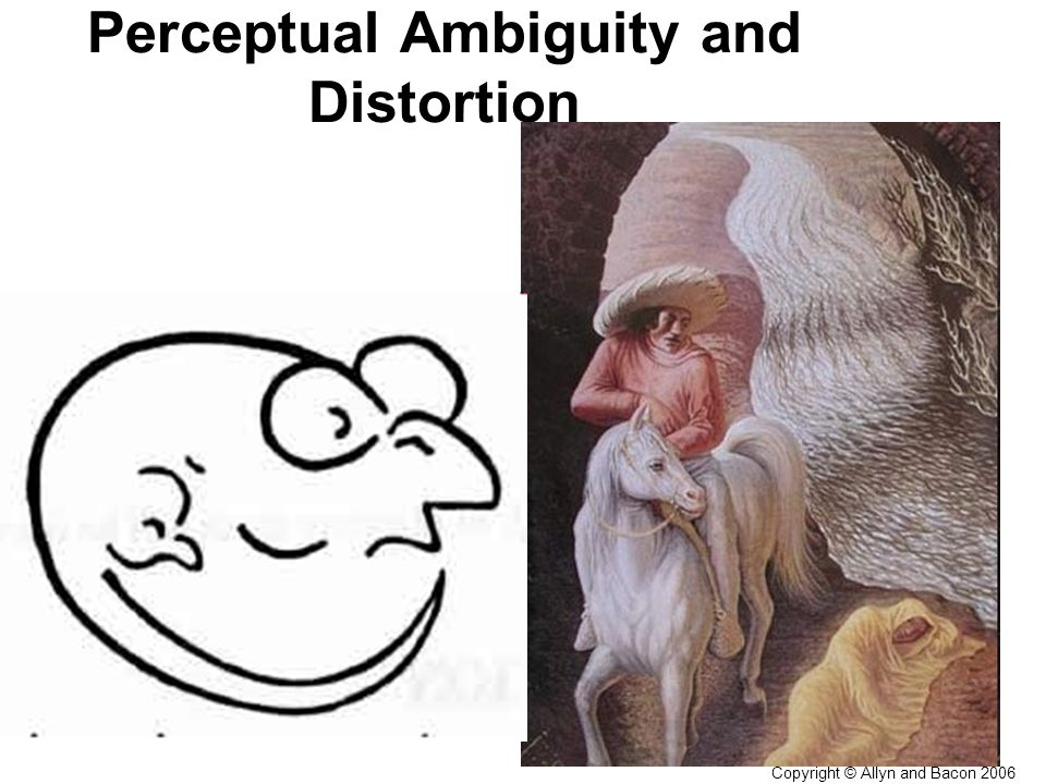 Copyright © Allyn and Bacon 2006 Perceptual Ambiguity and DistortionIllusions The incorrect interpretation of a stimulus pattern (shared by others in