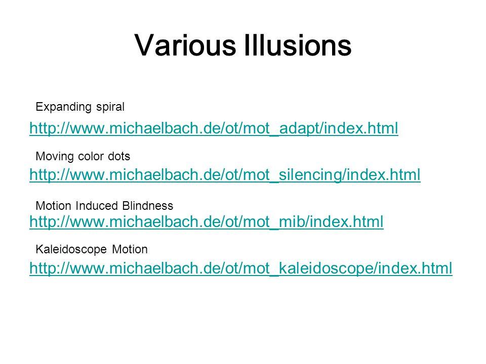 Various Illusions http://www.michaelbach.de/ot/mot_adapt/index.html http://www.michaelbach.de/ot/mot_silencing/index.html http://www.michaelbach.de/ot