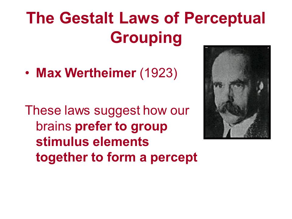 The Gestalt Laws of Perceptual Grouping Max Wertheimer (1923) These laws suggest how our brains prefer to group stimulus elements together to form a p