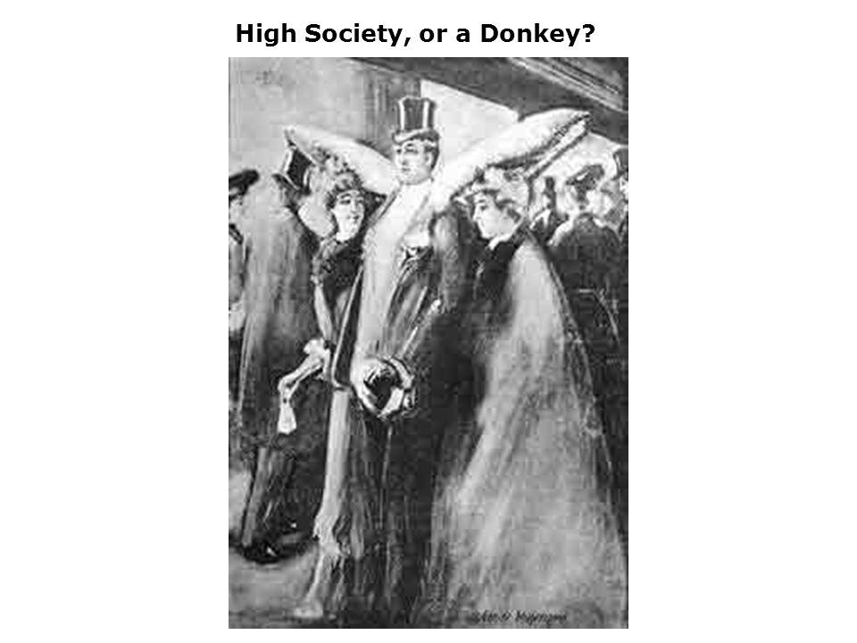 High Society, or a Donkey?