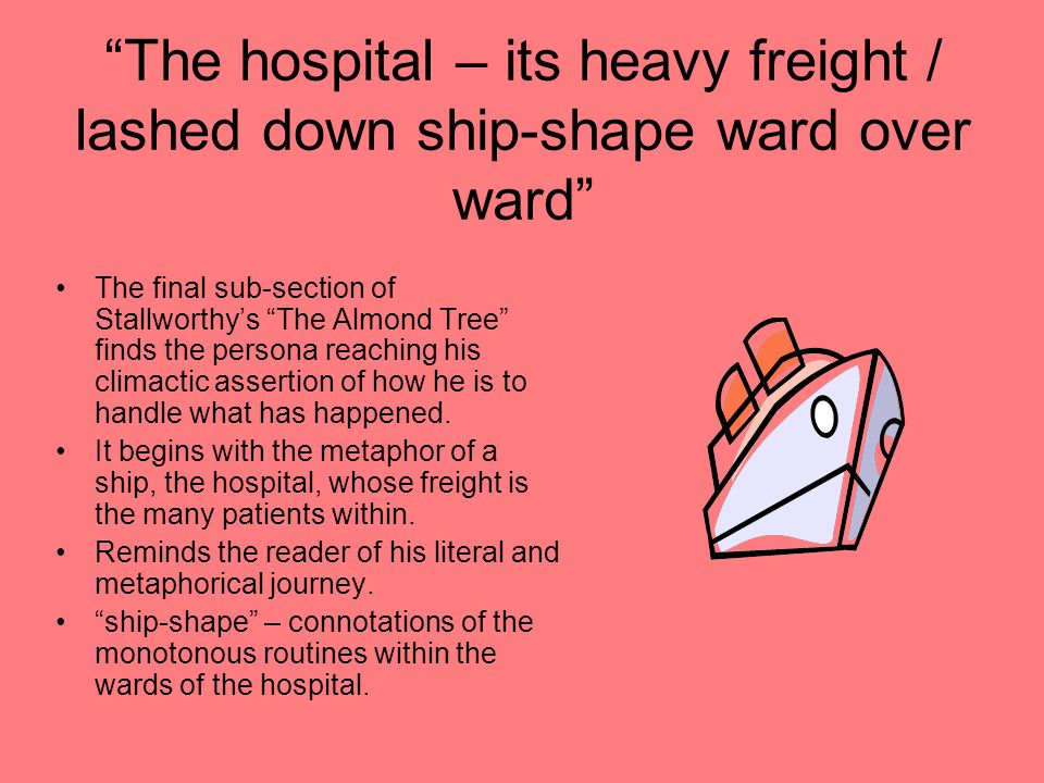 """The hospital – its heavy freight / lashed down ship-shape ward over ward"" The final sub-section of Stallworthy's ""The Almond Tree"" finds the persona"