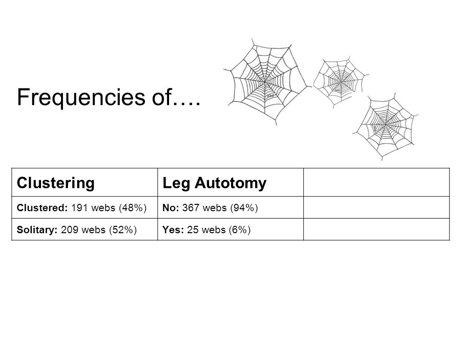 ClusteringLeg Autotomy Clustered: 191 webs (48%)No: 367 webs (94%) Solitary: 209 webs (52%)Yes: 25 webs (6%) Frequencies of….