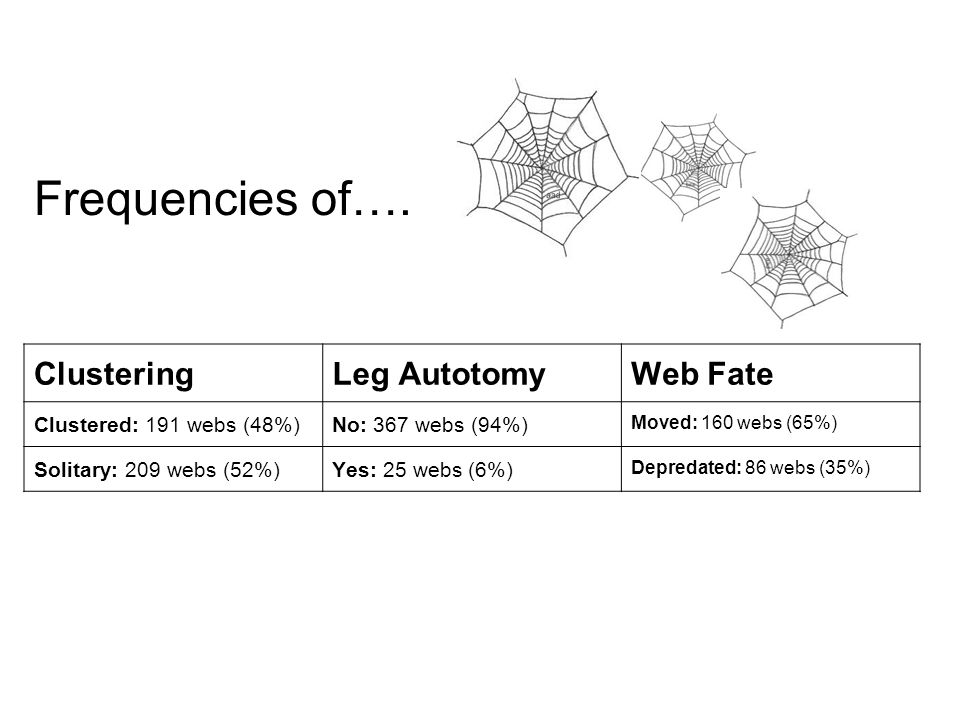 ClusteringLeg AutotomyWeb Fate Clustered: 191 webs (48%)No: 367 webs (94%) Moved: 160 webs (65%) Solitary: 209 webs (52%)Yes: 25 webs (6%) Depredated: