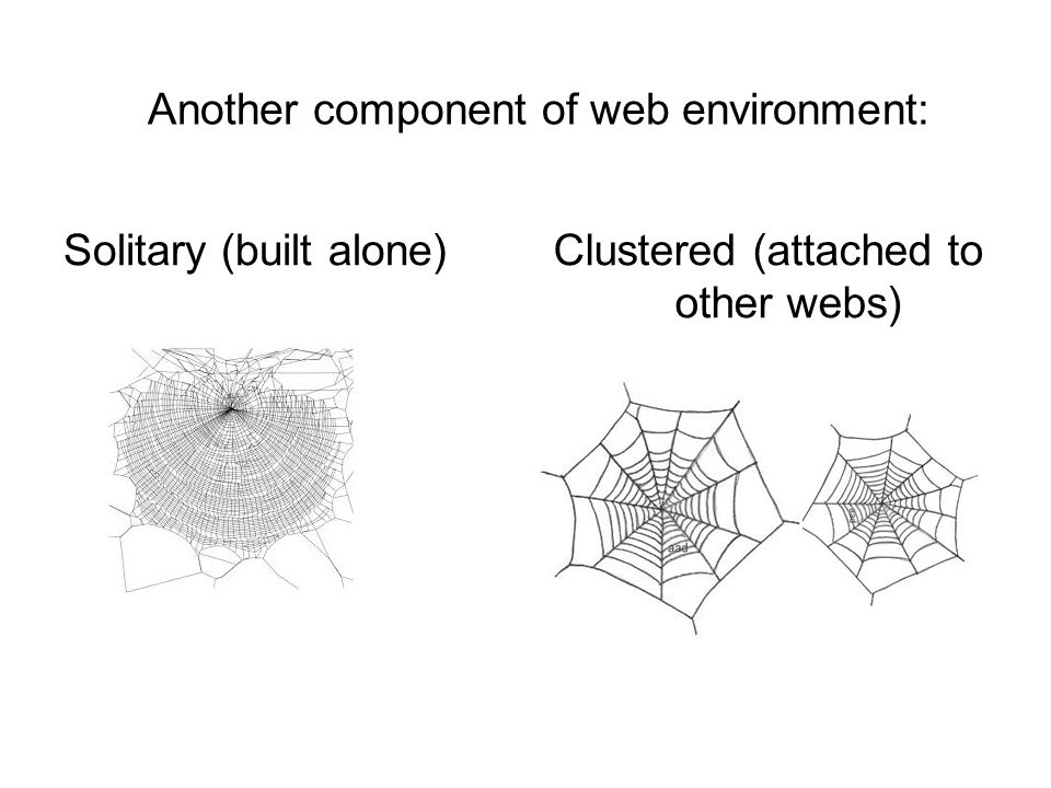 Another component of web environment: Solitary (built alone)Clustered (attached to other webs)