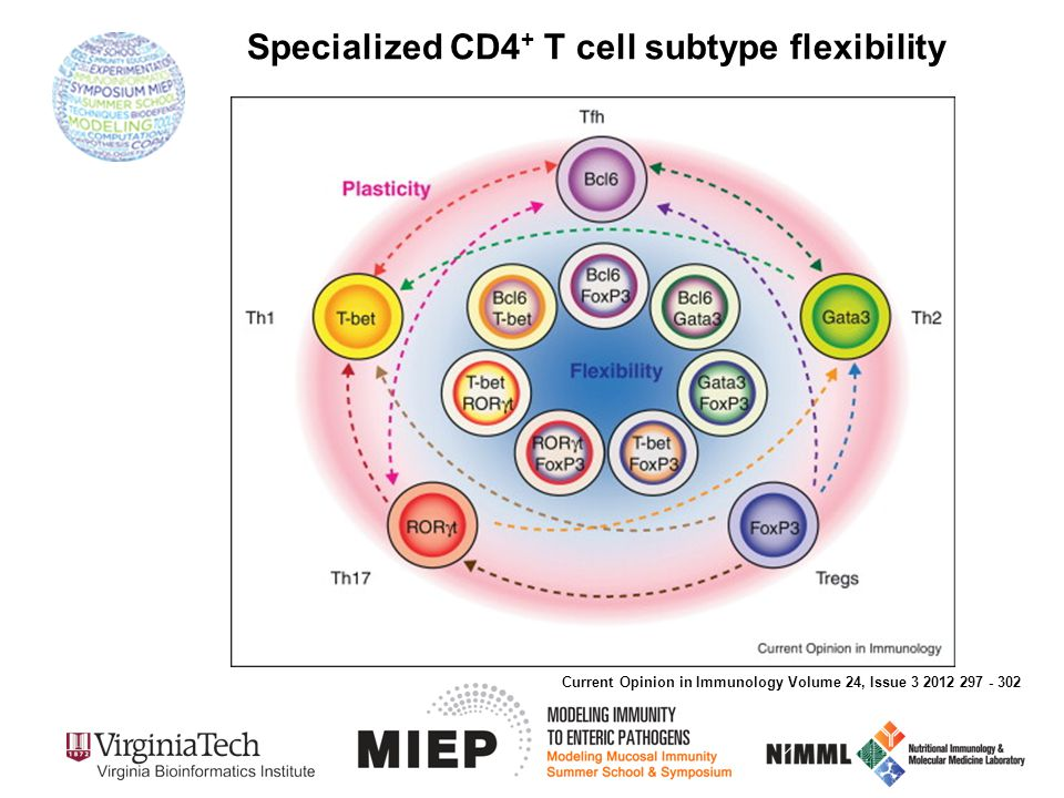 Specialized CD4 + T cell subtype flexibility Current Opinion in Immunology Volume 24, Issue 3 2012 297 - 302