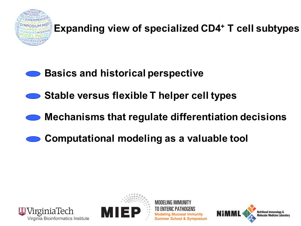 Expanding view of specialized CD4 + T cell subtypes Basics and historical perspective Stable versus flexible T helper cell types Mechanisms that regulate differentiation decisions Computational modeling as a valuable tool