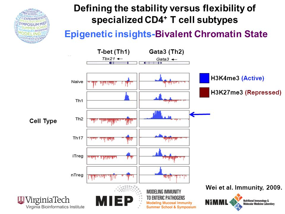 Wei et al. Immunity, 2009. H3K4me3 (Active) H3K27me3 (Repressed) T-bet (Th1)Gata3 (Th2) Defining the stability versus flexibility of specialized CD4 +