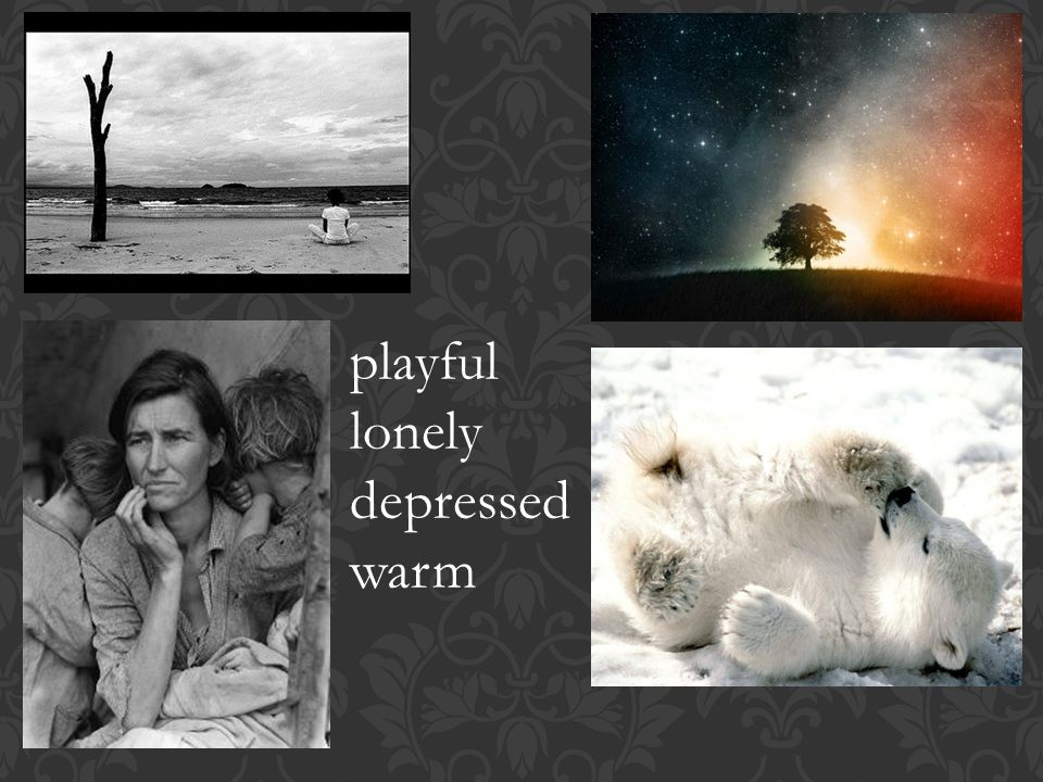 playful lonely depressed warm