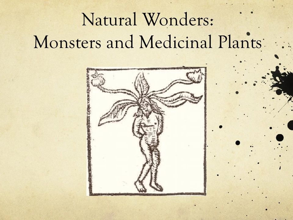 Natural Wonders: Monsters and Medicinal Plants