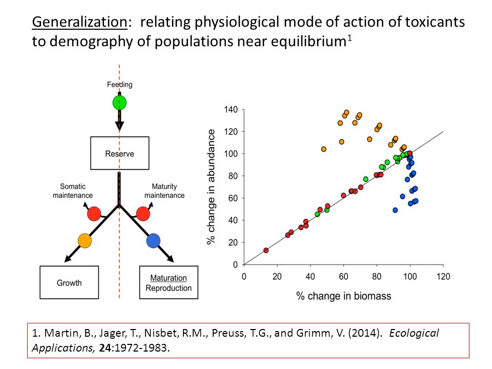 Generalization: relating physiological mode of action of toxicants to demography of populations near equilibrium 1 1. Martin, B., Jager, T., Nisbet, R