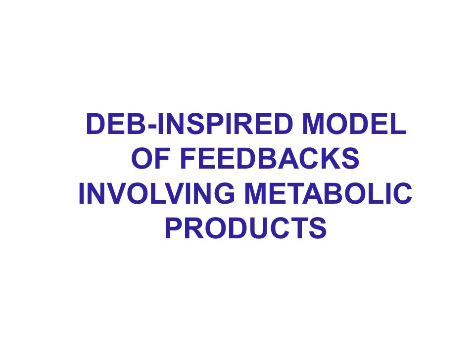 DEB-INSPIRED MODEL OF FEEDBACKS INVOLVING METABOLIC PRODUCTS