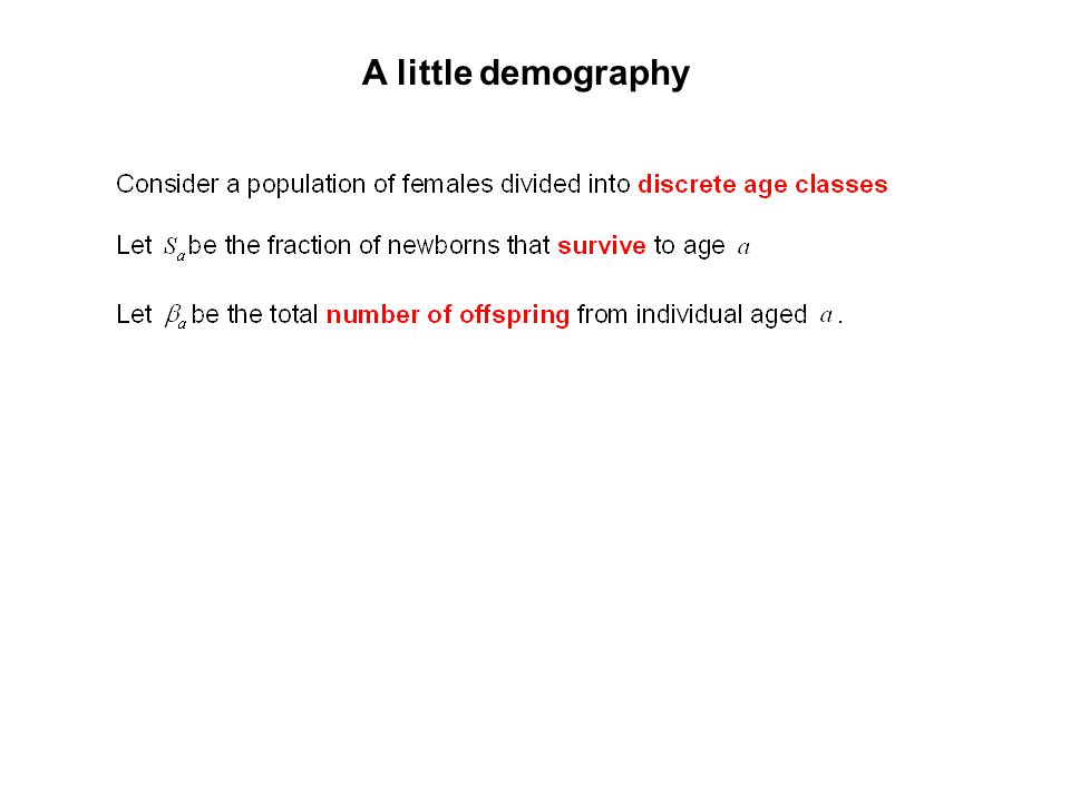 A little demography
