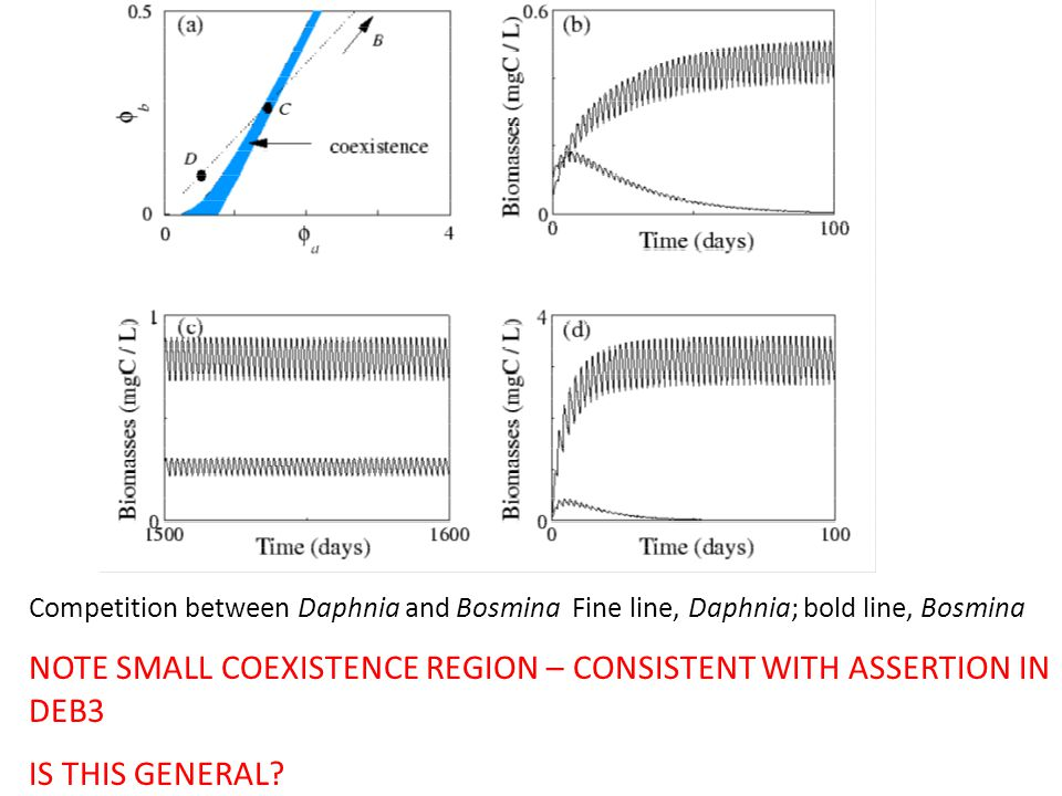 Competition between Daphnia and Bosmina Fine line, Daphnia; bold line, Bosmina NOTE SMALL COEXISTENCE REGION – CONSISTENT WITH ASSERTION IN DEB3 IS TH