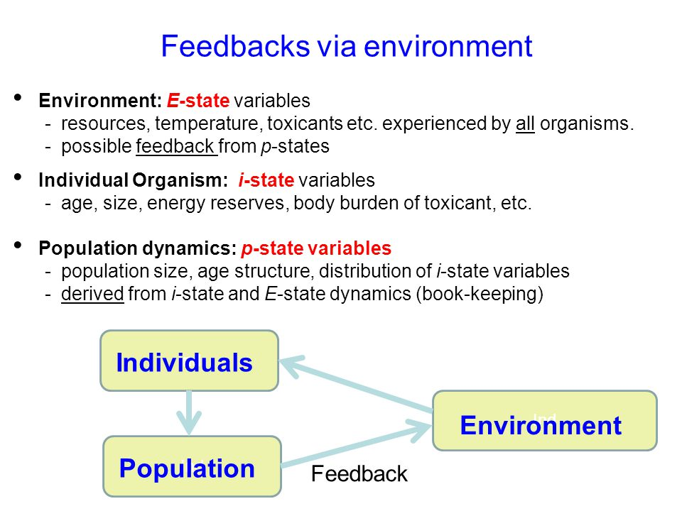 Feedbacks via environment Environment: E-state variables - resources, temperature, toxicants etc. experienced by all organisms. - possible feedback fr