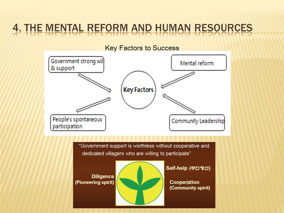 Key Factors to Success