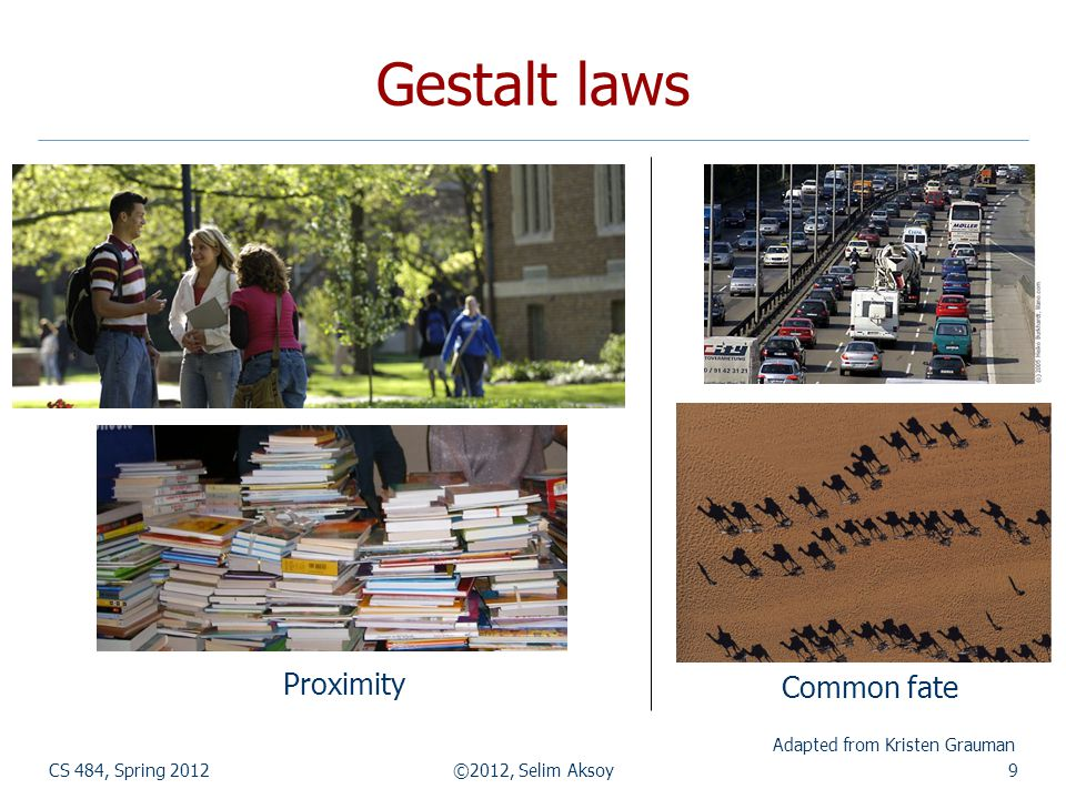 Gestalt laws CS 484, Spring 2012©2012, Selim Aksoy9 Adapted from Kristen Grauman Common fate Proximity