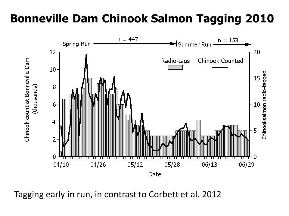 Bonneville Dam Chinook Salmon Tagging 2010 Tagging early in run, in contrast to Corbett et al. 2012