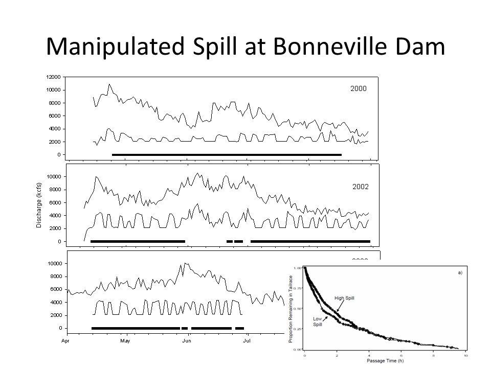 Manipulated Spill at Bonneville Dam