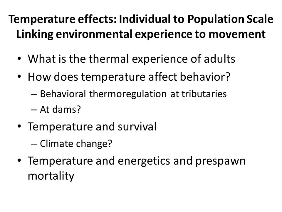 What is the thermal experience of adults How does temperature affect behavior.