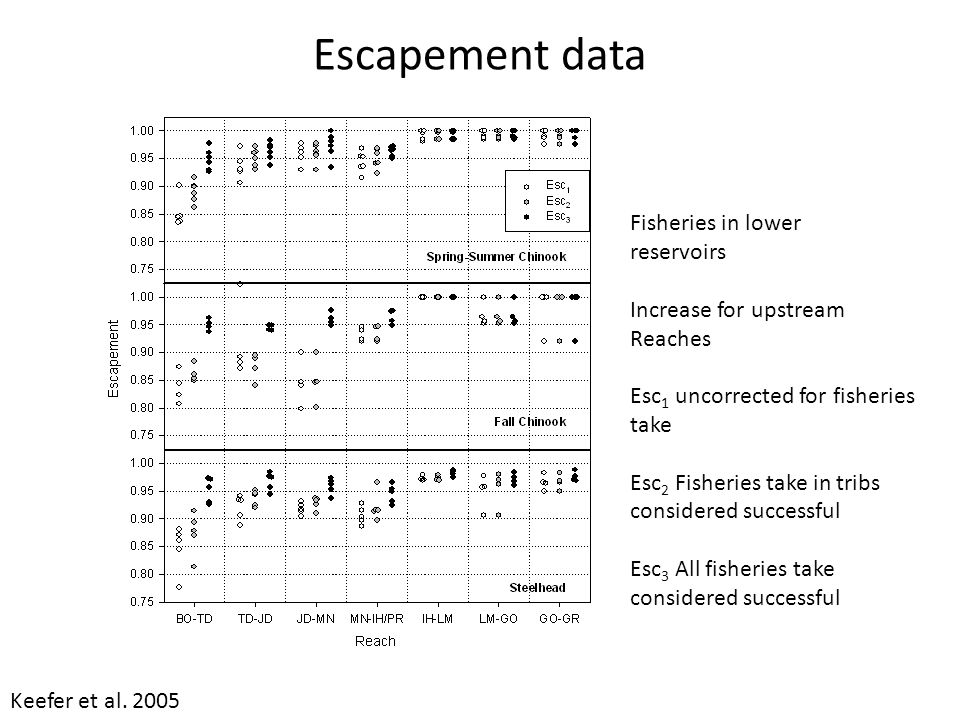 Escapement data Fisheries in lower reservoirs Increase for upstream Reaches Esc 1 uncorrected for fisheries take Esc 2 Fisheries take in tribs considered successful Esc 3 All fisheries take considered successful Keefer et al.