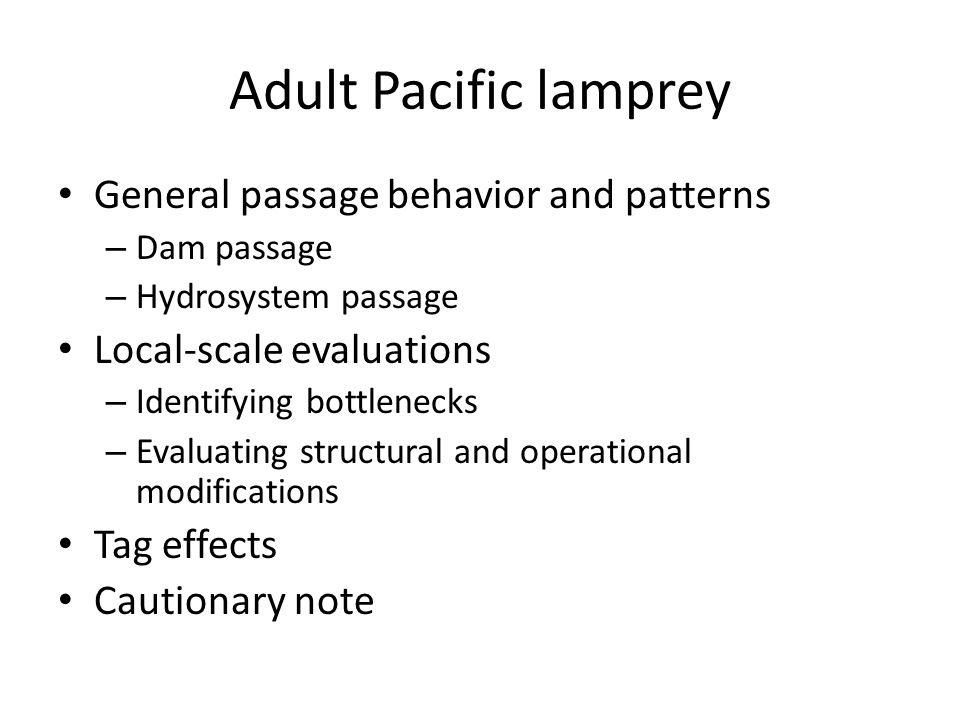 Adult Pacific lamprey General passage behavior and patterns – Dam passage – Hydrosystem passage Local-scale evaluations – Identifying bottlenecks – Evaluating structural and operational modifications Tag effects Cautionary note