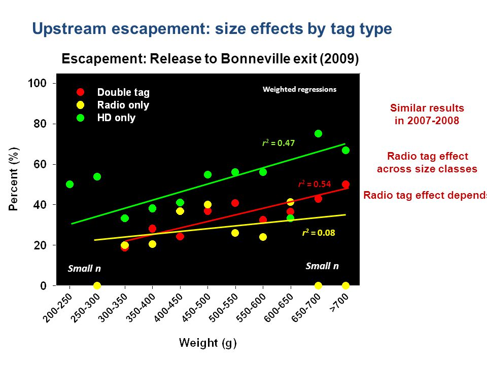 Escapement: Release to Bonneville exit (2009) Weighted regressions r 2 = 0.47 r 2 = 0.08 r 2 = 0.54 Small n Upstream escapement: size effects by tag type Similar results in 2007-2008 Radio tag effect across size classes Radio tag effect depends