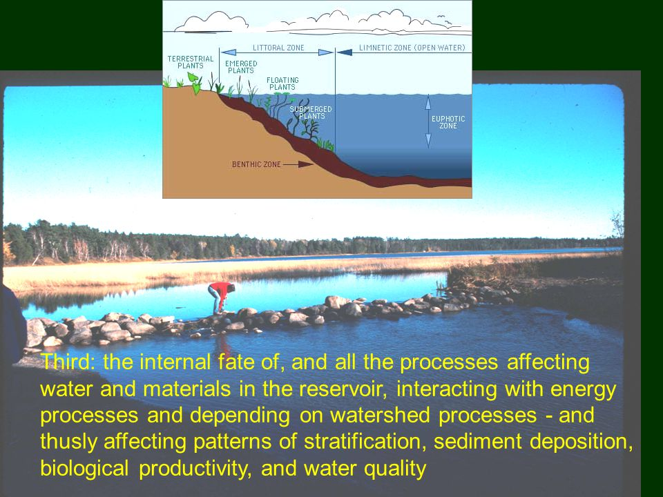 Third: the internal fate of, and all the processes affecting water and materials in the reservoir, interacting with energy processes and depending on watershed processes - and thusly affecting patterns of stratification, sediment deposition, biological productivity, and water quality
