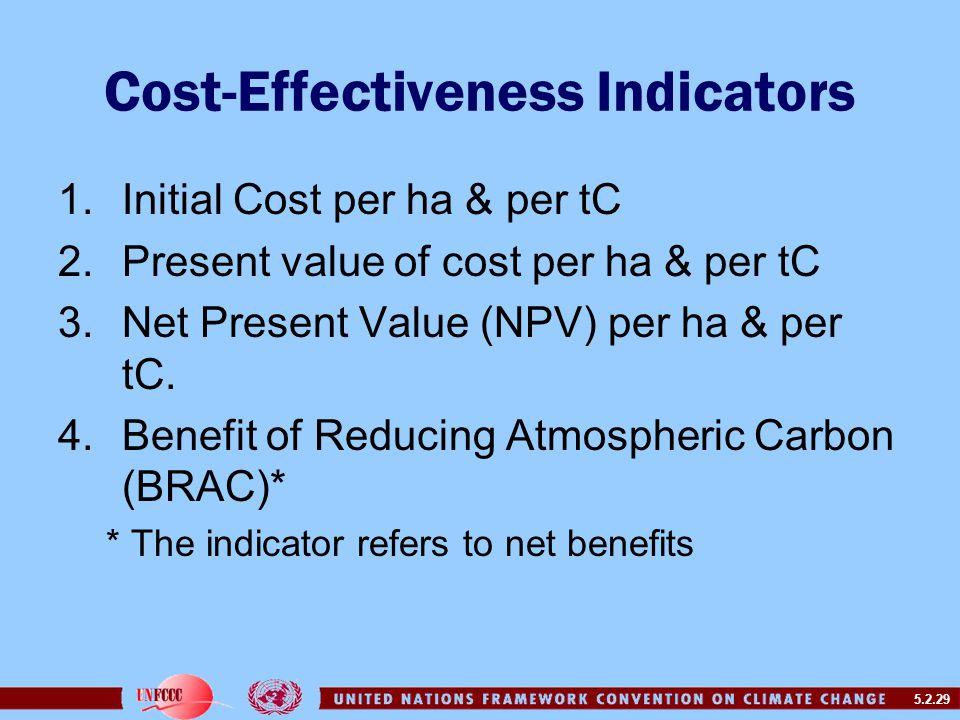 5.2.29 Cost-Effectiveness Indicators 1.Initial Cost per ha & per tC 2.Present value of cost per ha & per tC 3.Net Present Value (NPV) per ha & per tC.